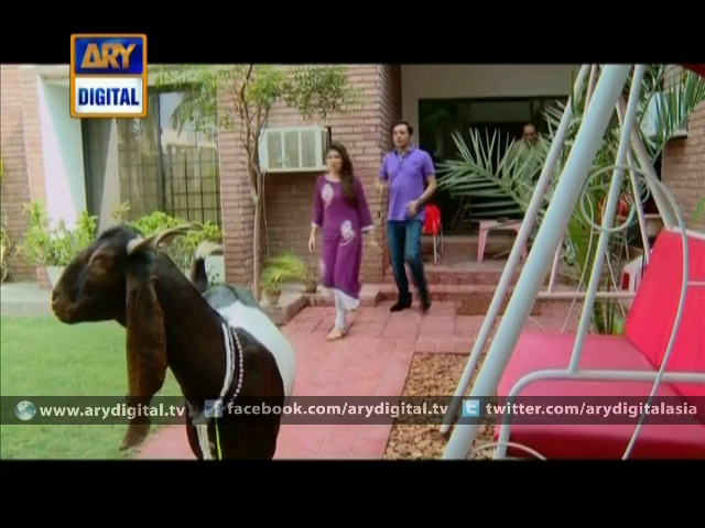 Bulbulay Episode – 259 – Eid Special 1st Day – 6th October 2014